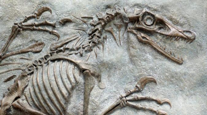 la ciencia y los huesos de dinosaurio