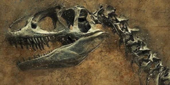 la ley y los huesos dinosaurio