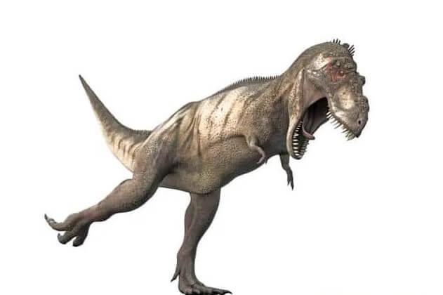 caida de un dinosaurio