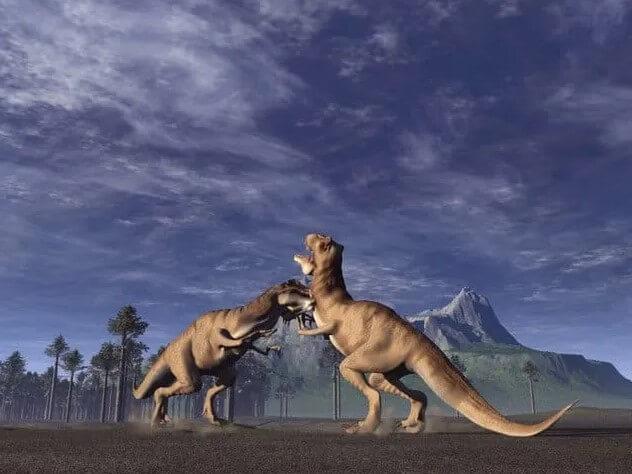 pelea y caida t-rex