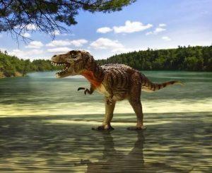 ¿Cómo se levantaría un T-Rex después de caer?