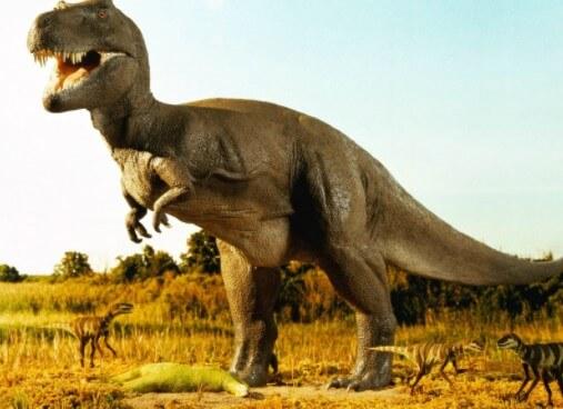 posibilidad de domesticar un dinosaurio