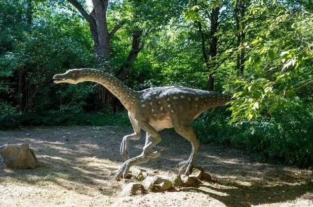 dinosaurio reconstruído