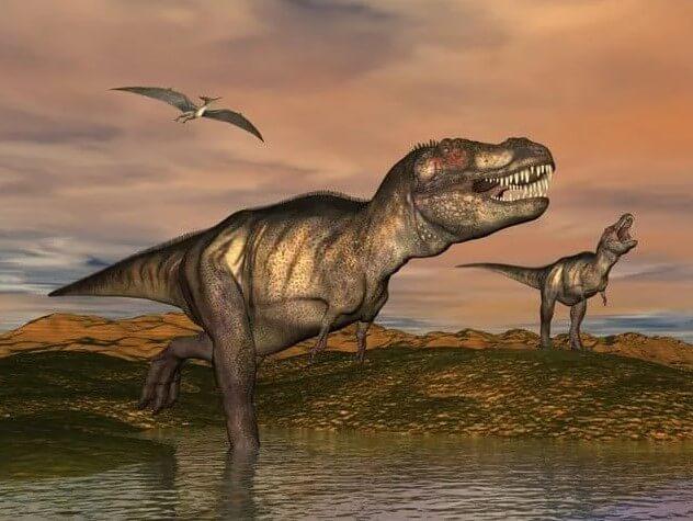t-rex visitar museo