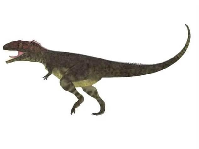 Mapusaurus cazador