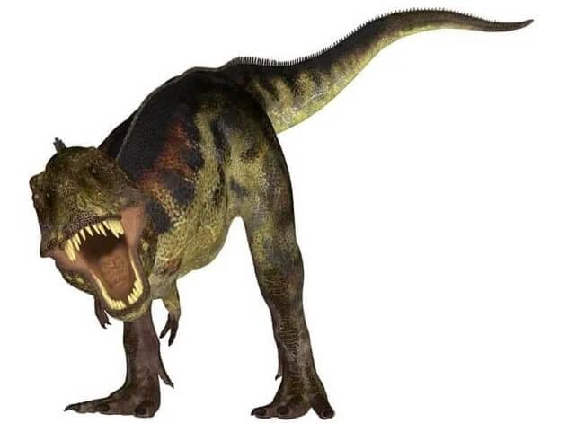 T-rex-fue-el-rey de los dinosaurios