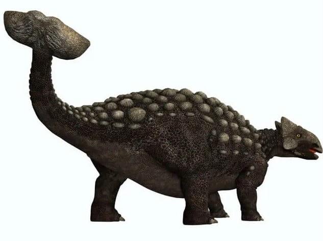 Ankylosaurus-había una cola de palo y era aterradora