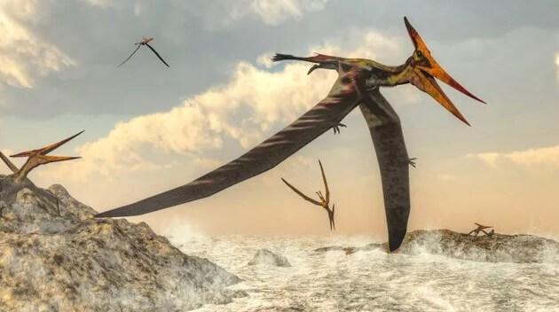 muchos tipos de dinosaurios voladores
