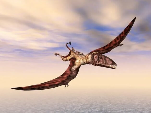 Dracorex-dinosaurio-dragón