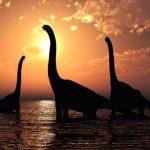 Listado y guía de los dinosaurios de cuello largo