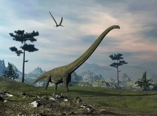 Dinosaurios de cuello largo-mamenchisaurus