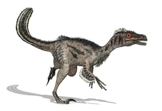 Dinosaurios de rapiña que utilizan la cola para equilibrar