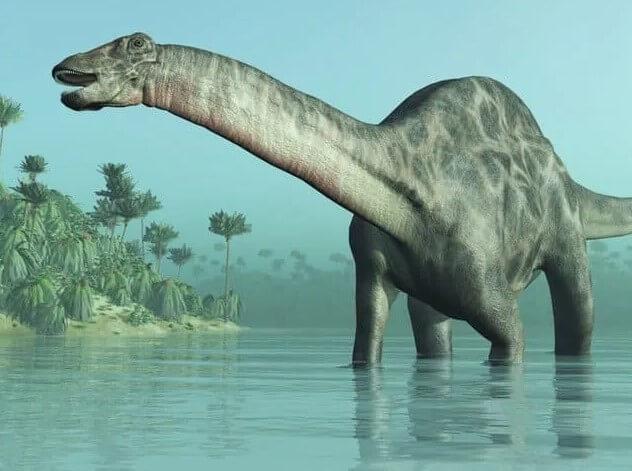 Los saurópodos