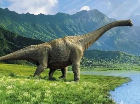 intentar domesticar a un dinosaurio