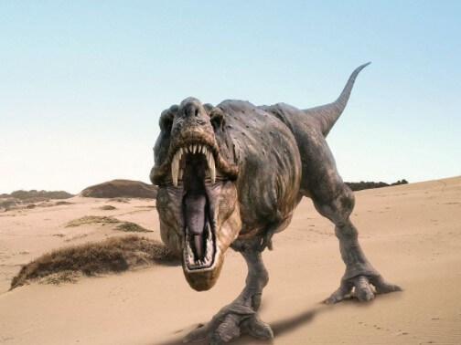 difícil domesticar a un dinosaurio